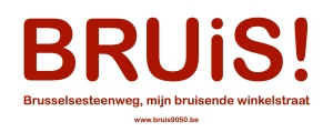 bruis logo 2.pages